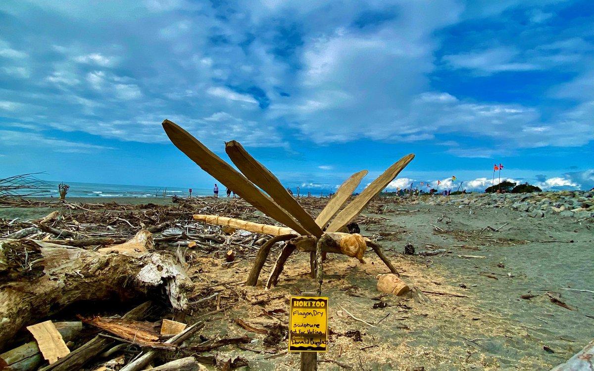 1. Driftwood 3.jpg