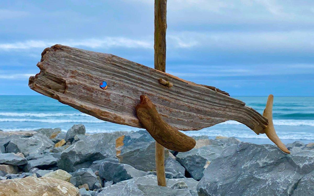 1 Driftwood 2.jpg