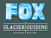 Fox g guiding logo