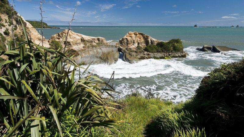 Cape Foulwind 4.jpg