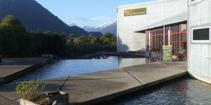 Conservation Centre Haast 2018