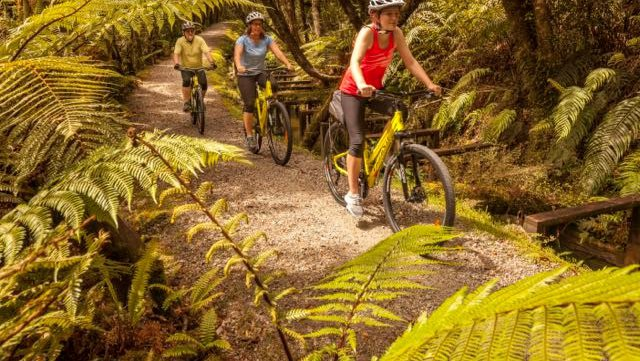 Cycle Journeys Tile.jpg