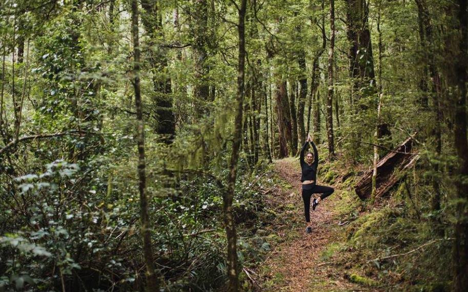 Maruia Springs wellness retreat