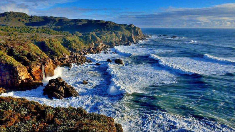 Kawatiri Coastal Trail.jpg