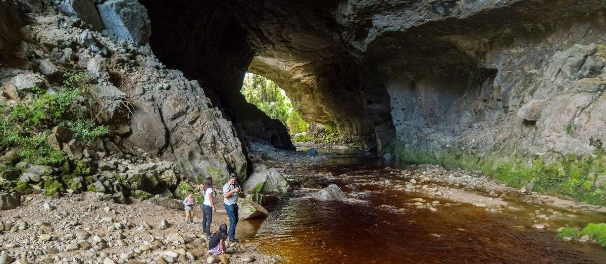 Oparara Arches in Karamea - New Zealand - 0173