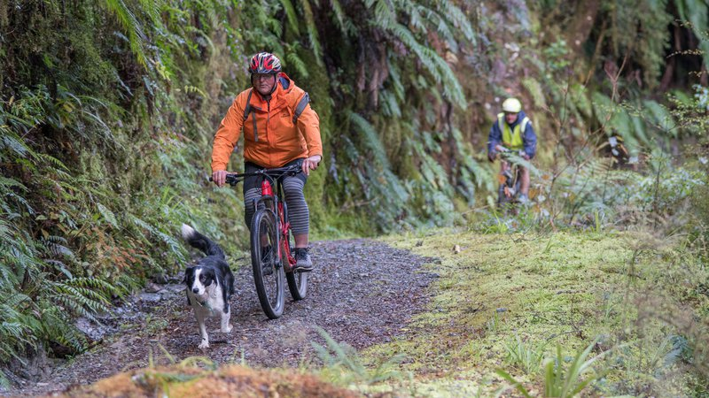 Reefton Mountain Biking