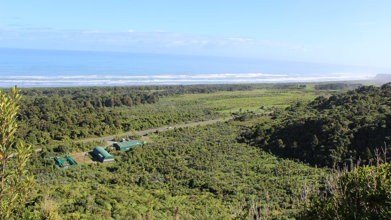 Punakaiki Coastal Restoration Project