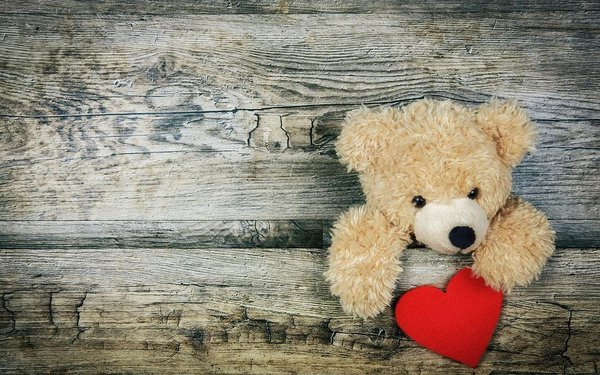 Teddy Bear 3.JPG
