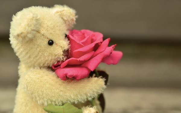 Teddy Bear 4.JPG