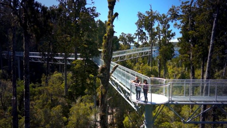 West Coast Treetop Walk & Cafe