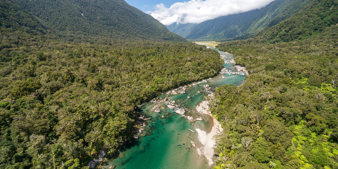 Haast World Heritage Area - 1054