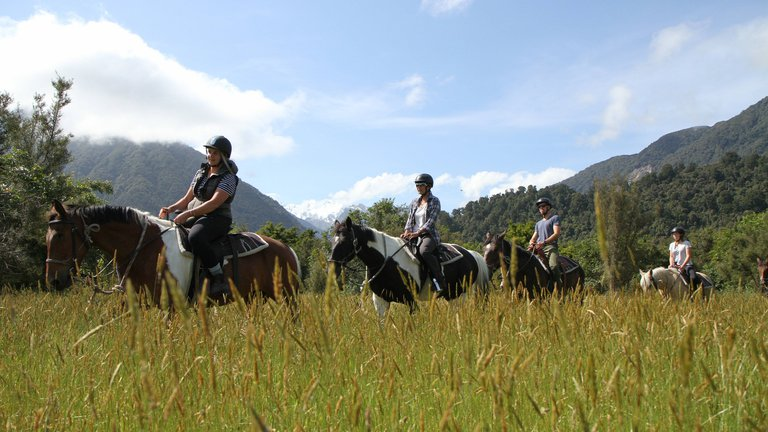 experience-fox-glacier-horse-riding-IMG_4284.jpg